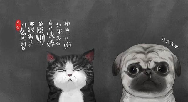 第2话 傲娇是猫的原则