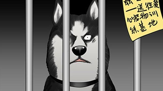 一条狗#56、57 被送到虐狗基地了!