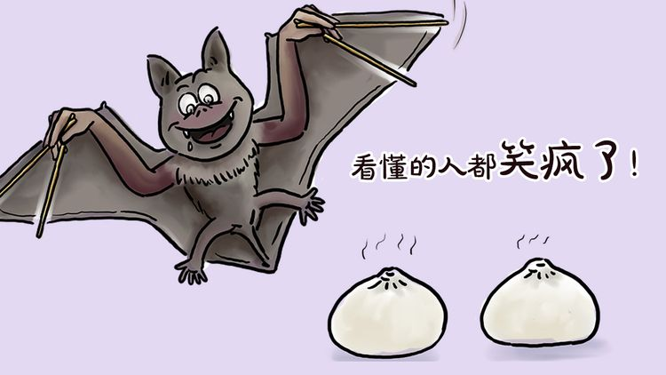 贪吃的蝙蝠