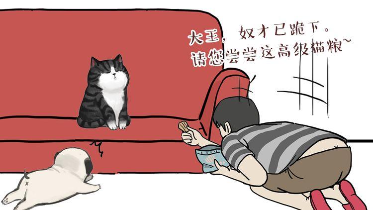 """第42话 猫奴的""""幸福"""""""