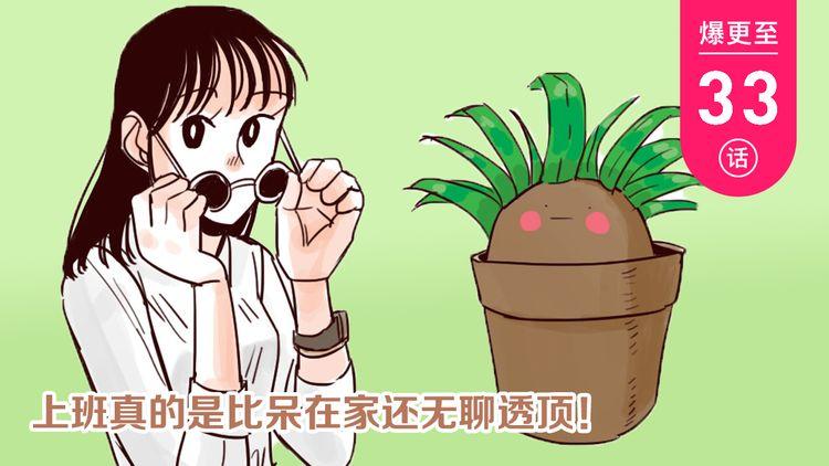 第25话 盆栽