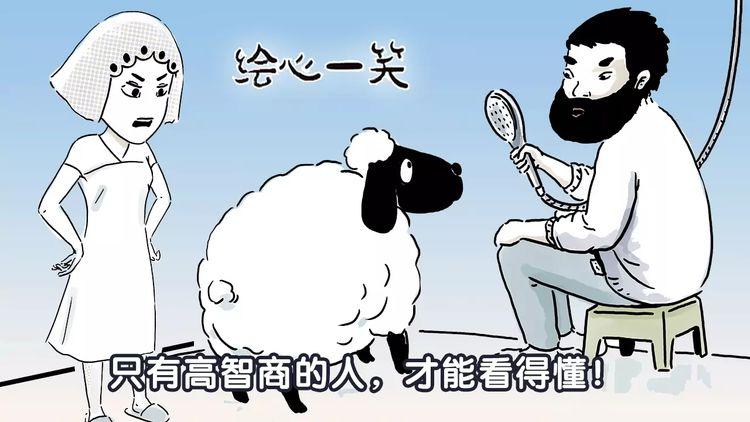 第157话  洗羊说明书