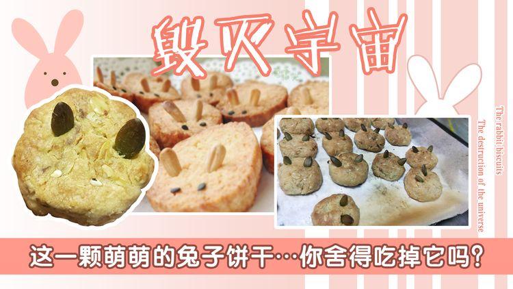 仙女全麦兔仓鼠饼